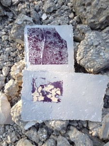 Prints from the debris